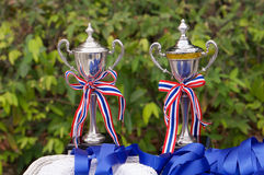 Trophy cup Stock Images