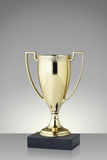 Trophy cup. Golden trophy cup on gray background stock image