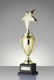 Trophy cup. Golden trophy cup star on gray background stock image