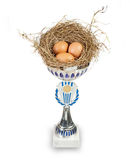 Trophy cup with hay nest and eggs. Trophy cup with hay nest and three hen eggs over white background stock images