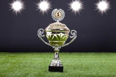 Trophy Cup Lying On Green Pitch Filed Stock Photos