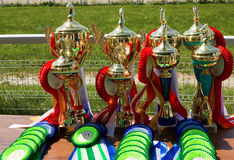 Trophy Cup. Royalty Free Stock Images