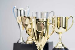 Trophy Cup on white background. Close-up of Trophy Cup on white background stock image