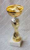 Trophy cup for winner. Trophy cup for a winner in a competition Stock Images