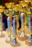 Trophy cups before competitins, selective focus. Stock Photos
