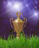Trophy sitting on grass Royalty Free Stock Image