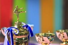 Trophy for Taekwondo contest royalty free stock image