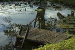 Tropiący jezioro Obrazy Royalty Free