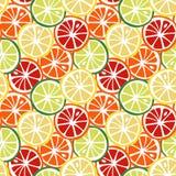 Tropi jaune d'agrume de pamplemousse de rouge orange de chaux de vert de citron de fruit illustration de vecteur