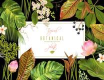 Tropial planterar banret royaltyfri illustrationer