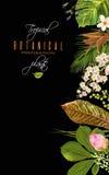 Tropial plants banner Stock Photo