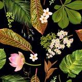 Tropial plants pattern Stock Photo