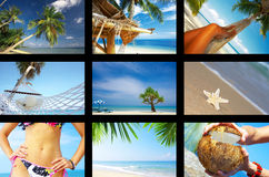 Tropic Royalty Free Stock Photo