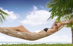 Free Tropic Stock Photography - 13246802