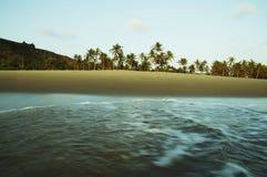 Tropic Stock Photography