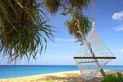 In tropic. View of nice white hammock hanging between two palms stock image