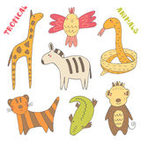 Tropic animals collection Stock Photo