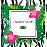 Tropic banner. Design template. Tropical frame. Exotic leaves and flowers frame with blank space paper and zebra stripes  Royalty Free Stock Image