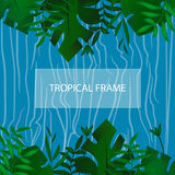 Tropic banner. Design template. Tropical frame. Exotic leaves frame with blank space on blue water background. Advertisement, flye. Tropic banner. Design Royalty Free Stock Photo