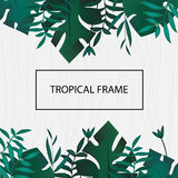 Tropic banner. Design template. Tropical frame. Exotic leaves frame with blank space on wooden background. Advertisement, flyer.  Royalty Free Stock Photography