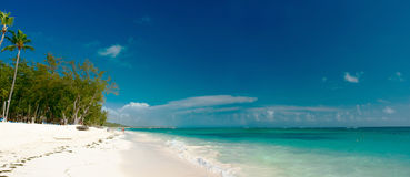 Tropic bay. In Dominican Republic Stock Photo
