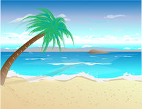 Tropic beach Stock Photography