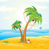 Tropic Beach Christmas Stock Images