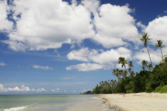 Tropic beach Royalty Free Stock Photo