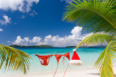 Tropic christmas Royalty Free Stock Photography
