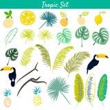 Tropic clipart vector set. Royalty Free Stock Photo