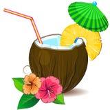 Tropic cocktail pina colada Stock Photo