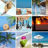 Tropic collage Royalty Free Stock Photo