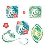 Tropic Design Set Royalty Free Stock Image