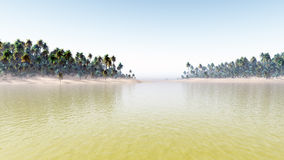 Tropic Environment Warm Day royalty free stock photos