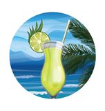 Tropic exotic cocktail Royalty Free Stock Photos