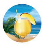 Tropic exotic cocktail Royalty Free Stock Images