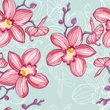 Tropic floral background with orchids Royalty Free Stock Photos