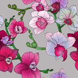 Tropic floral seamless pattern with hand drawing orchid flowers Royalty Free Stock Photos