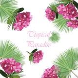 Tropic flowers Vector card Stock Photo