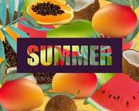 Tropic fruits exotic pattern Summer Vector illustration Stock Image