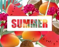 Tropic fruits exotic pattern Summer Vector illustration Stock Photos