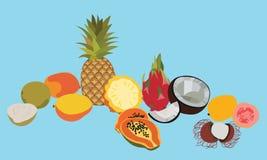 Tropic fruits  vector set. Stock Image