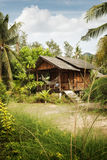 Tropic house Royalty Free Stock Image