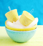 Tropic ice cream pops Stock Photography