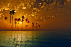 Tropic island at sunset Stock Images