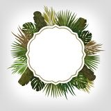 Tropic leaves background with frame for your text. Eps10 vector template. Tropic leaves background with frame for your text. Eps10 vector template Royalty Free Stock Photos