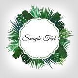 Tropic leaves background with frame for your text. Eps10 vector template. Tropic leaves background with frame for your text. Eps10 vector template Royalty Free Stock Image