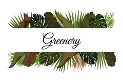 Tropic leaves background with frame for your text. Eps10 vector template. Tropic leaves background with frame for your text. Eps10 vector template Stock Image