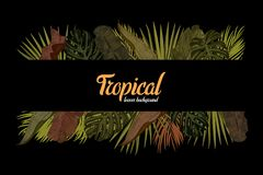 Tropic leaves background with frame for your text. Eps10 vector template. Tropic leaves background with frame for your text. Eps10 vector template Royalty Free Illustration