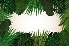 Tropic leaves background with frame for your text. Eps10 vector template. Tropic leaves background with frame for your text. Eps10 vector template Stock Photo